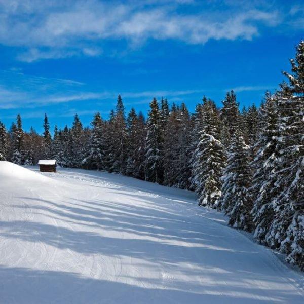 skifahren-am-kronplatz-im-pustertal-urlaub-auf-dem-fuchshof-14